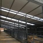 Доставка на покривни термопанели с фолио на кравеферма в с. Драгомъж